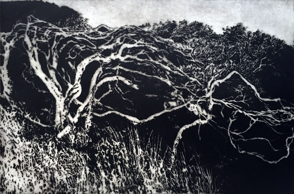 Carmel Wallace 'Cape Bridgewater' 1993 drypoint print 39.5 x 59.5cm